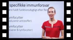 Det specifikke immunforsvar