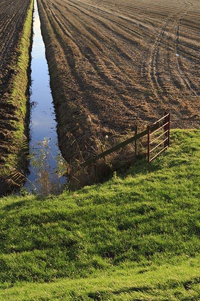 shutterstock_66231829 landbrug afvandingskanal ingen randzone