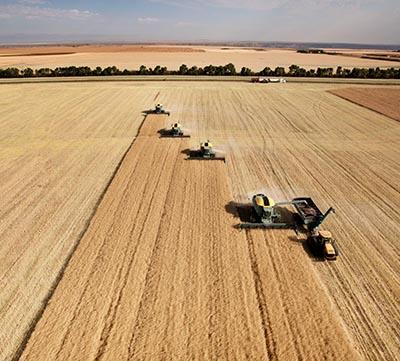 shutterstock_88472053 landbrug høste