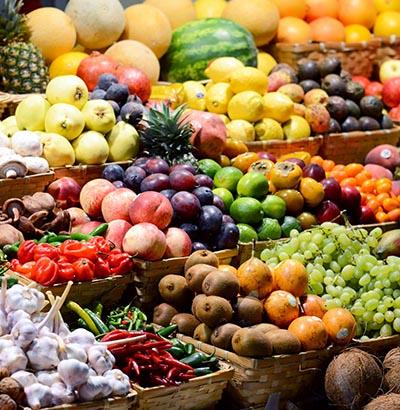 Organisk materiale som planter har dannet ud fra simple uorganiske molekyler.